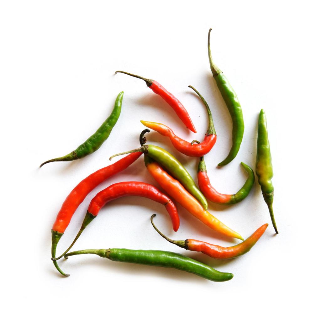 kajal fresh green chilli